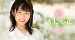 카와키타 사이카 (Saika Kawakita . 河北彩花) 6